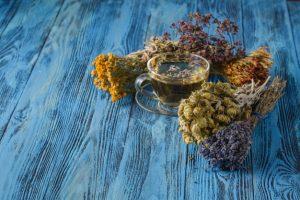 травяной чай, фитотерапия, болезнь Паркинсона, дом престарелых, гериатрическая клиника, реабилитационные программы
