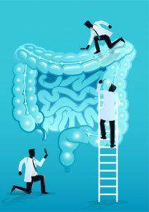 ЖКТ, витамины, токсины, соли, лимфа